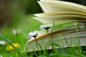 Primadonna - a women's literary festival
