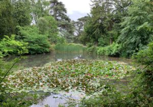 a day out in Bury St Edmunds - nowton park