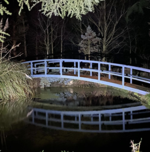 bridge at nighttime with reflection over the lake