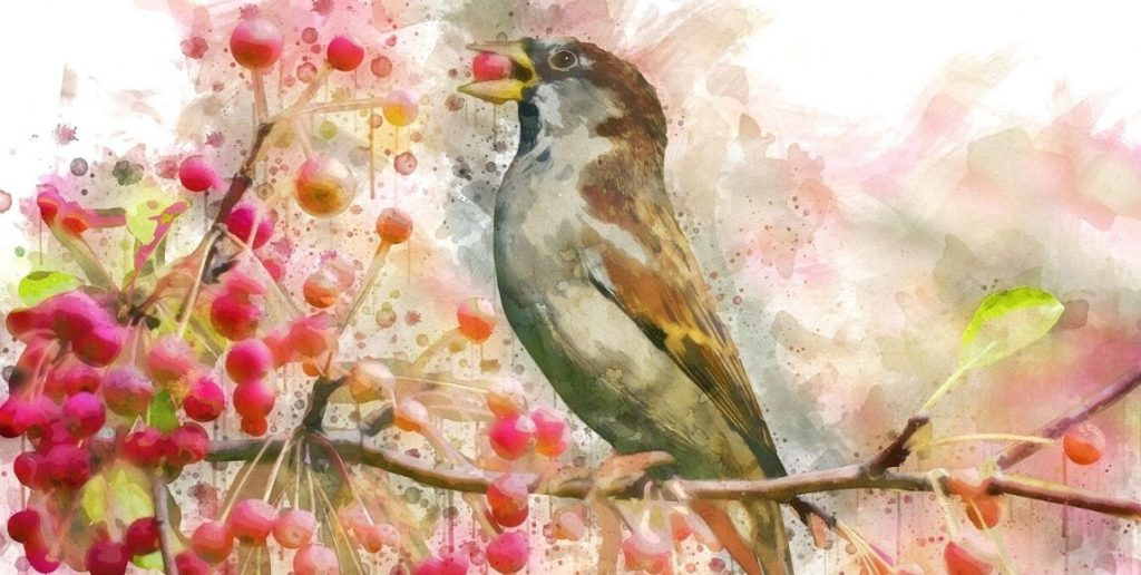 watercolour bird sitting on a berry branch eating a berry